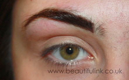After 1st visit, feathered brows